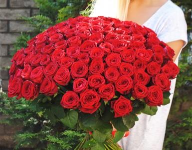 101 raudona rožė Red Naomi tik nuo 135 Eur!