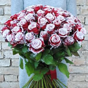 Naujiena! Apsnigtos rožės!