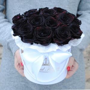Black roses - Naujiena!