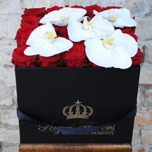 Raudonos rožės dėžutėje ROY+O