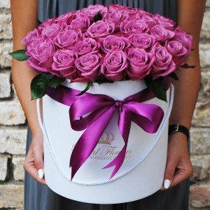 Violetinės rožės dėžutėje AB/D
