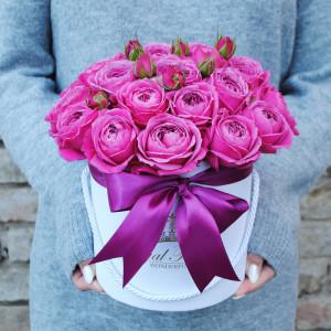 Bijūninės rožės dėžutėje