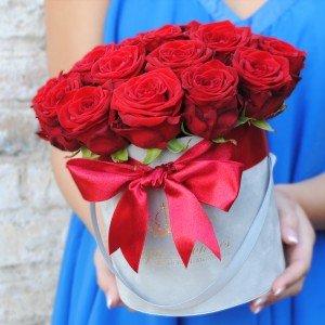 Raudonos rožės AP/M Velvet