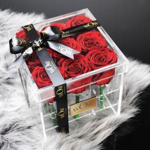 Miegančios raudonos rožės CR/M